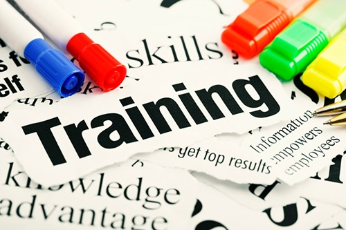 How to Find the Best Cross Cultural Training