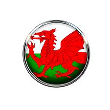 Conservative MP Apologises for Welsh-Language Website Translation Errors